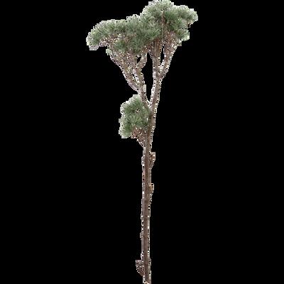 Branchage artificiel vert L67cm-SILIANA