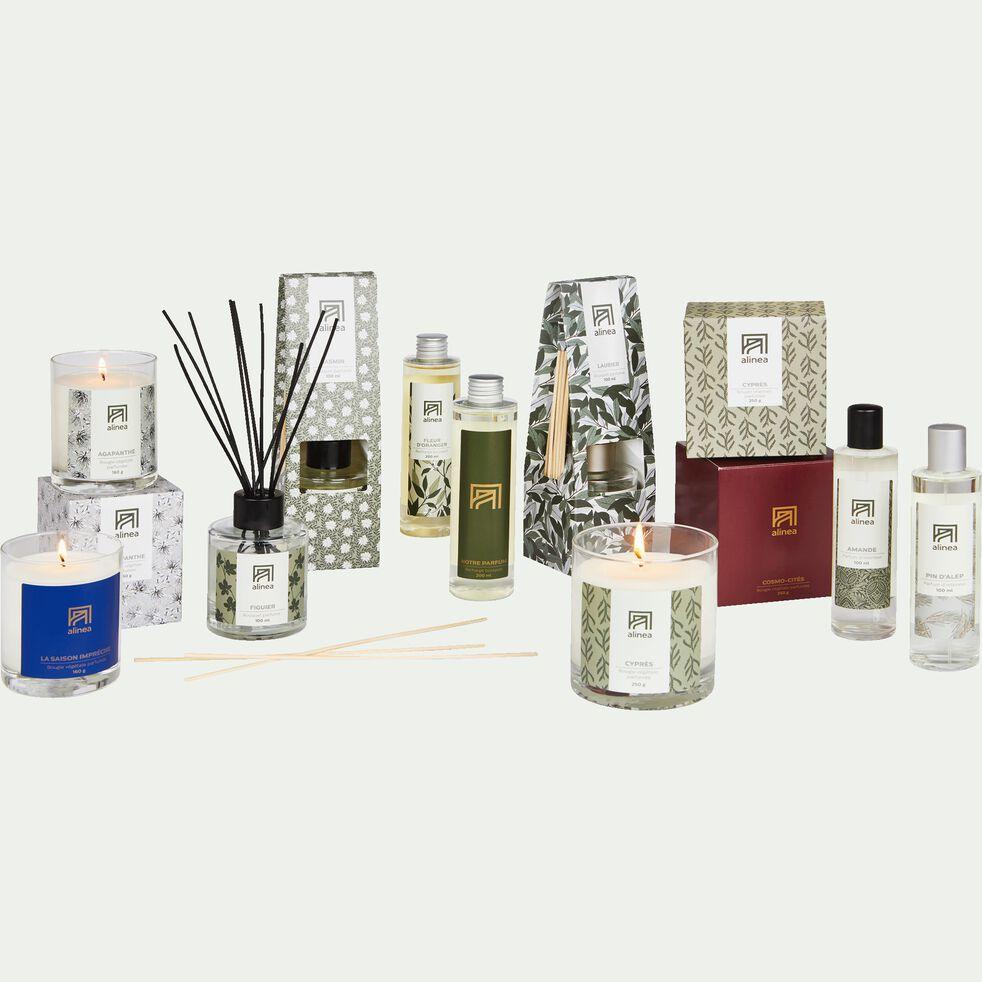 Bougie parfumée senteur Agapanthe 160g-AGAPANTHE