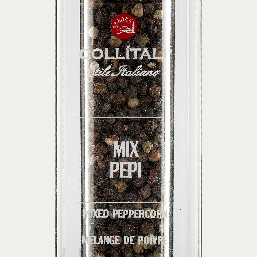 Moulin poivre noir - petit modèle-CRYSTAL MOULIN