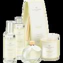 Diffuseur de parfum Bambou Blanc 100ml-BAMBOU BLANC