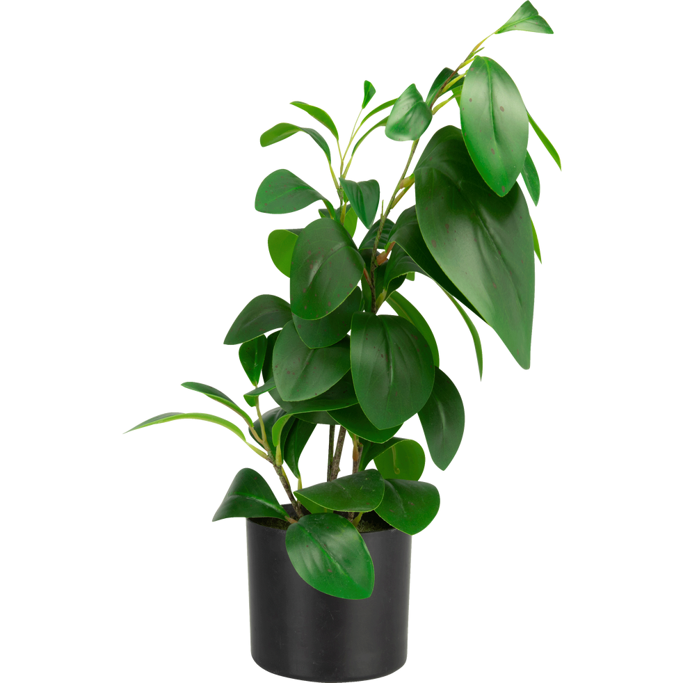 Plante artificielle H46cm-BUISSON