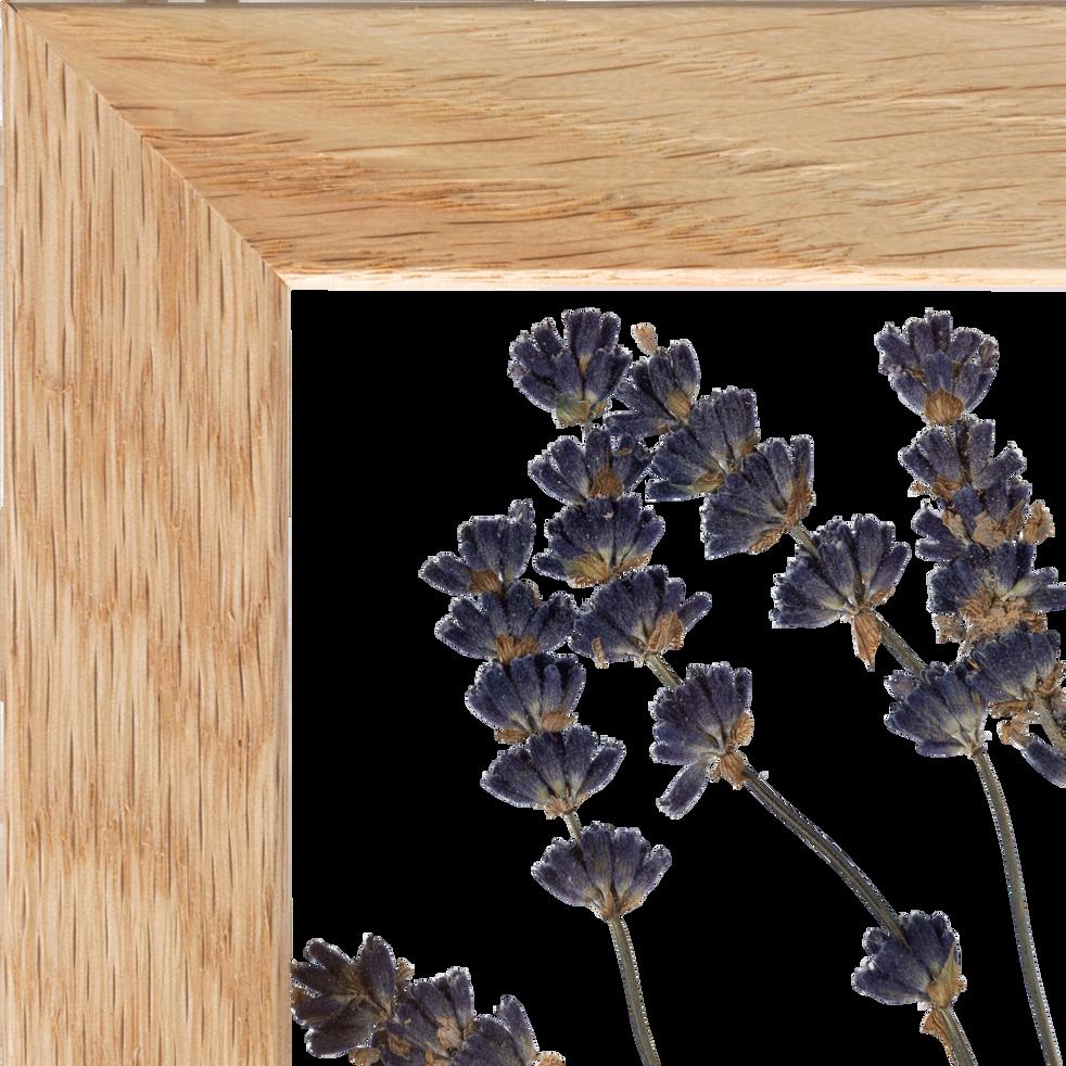 Plante encadrée lavande 17x22cm-NATURE