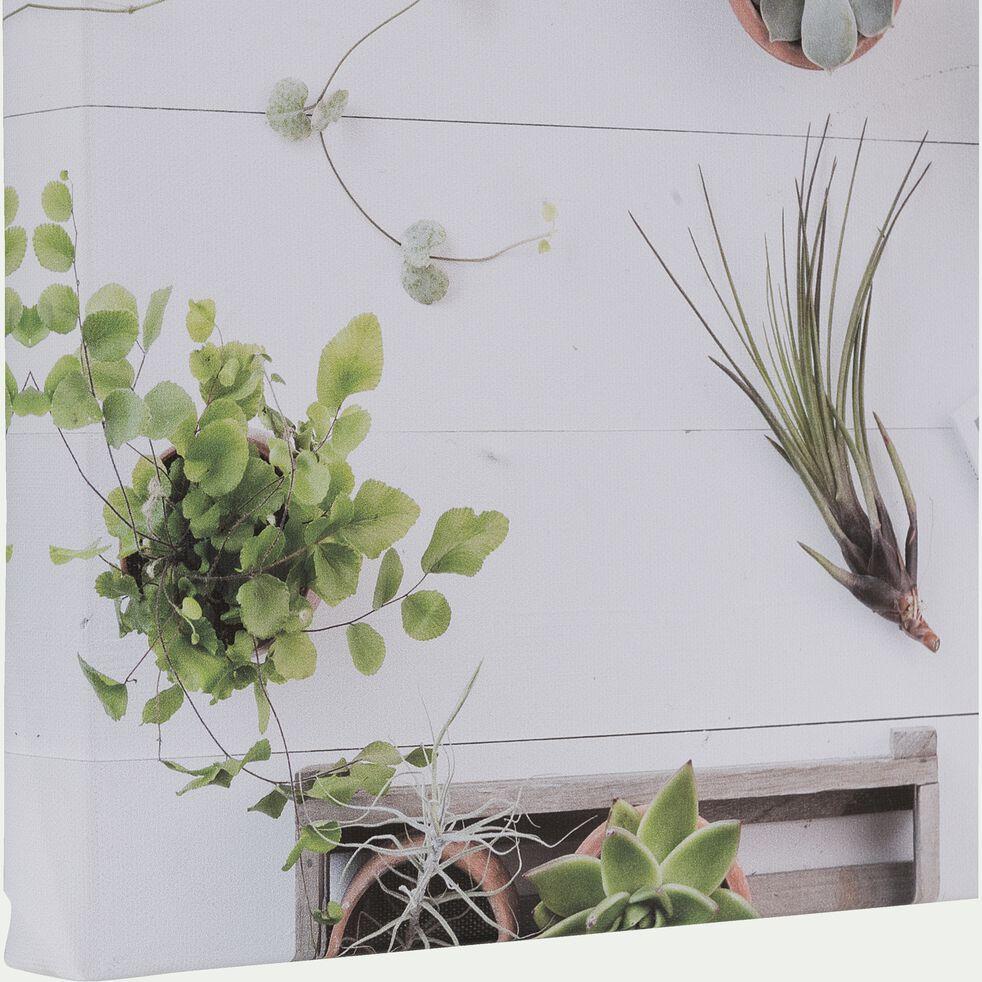 Toile imprimée photo succulentes 30x30 cm-AUBERIO