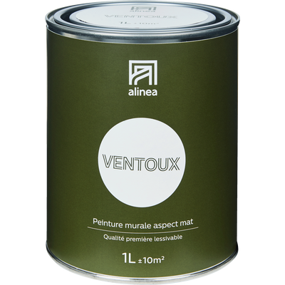 Peinture acrylique mate multi-supports 1L blanc ventoux-PEINTURE