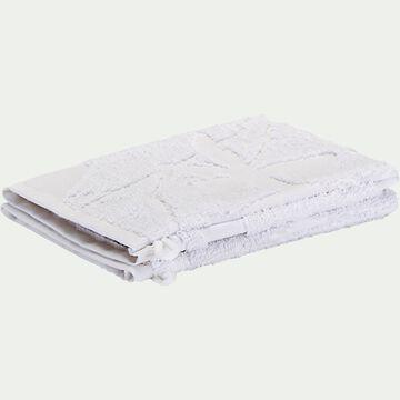 Lot de 2 gants de toilette en coton - blanc-Ryad