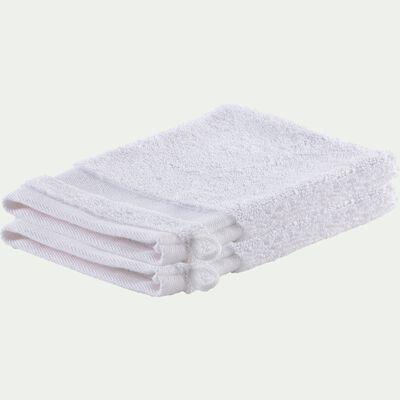 Lot de 2 gants de toilette qualité hôtelière en coton - blanc-Riviera