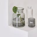 Photophore en verre H6cm vert cèdre-Lumio