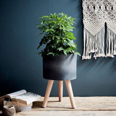 Cache-pot en pierre et bois H48xD31cm-TAMARIS