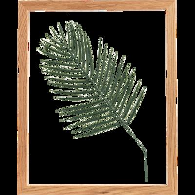 Image encadrée feuille de palmier 44x54cm-NATURE