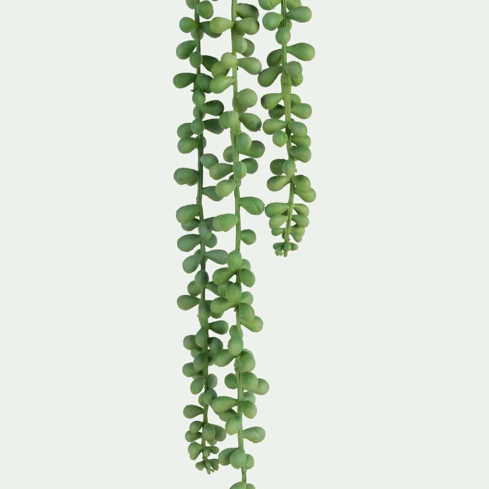 Plante tombante artificielle H78cm-SENECON