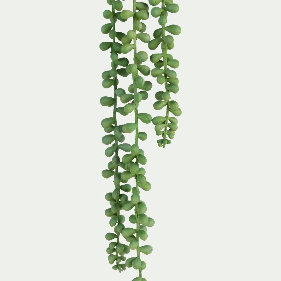 Plante tombante artificielle - vert H78cm-SENECON