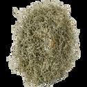 Couronne verte de fleurs d'asperge D60cm-ANNAM
