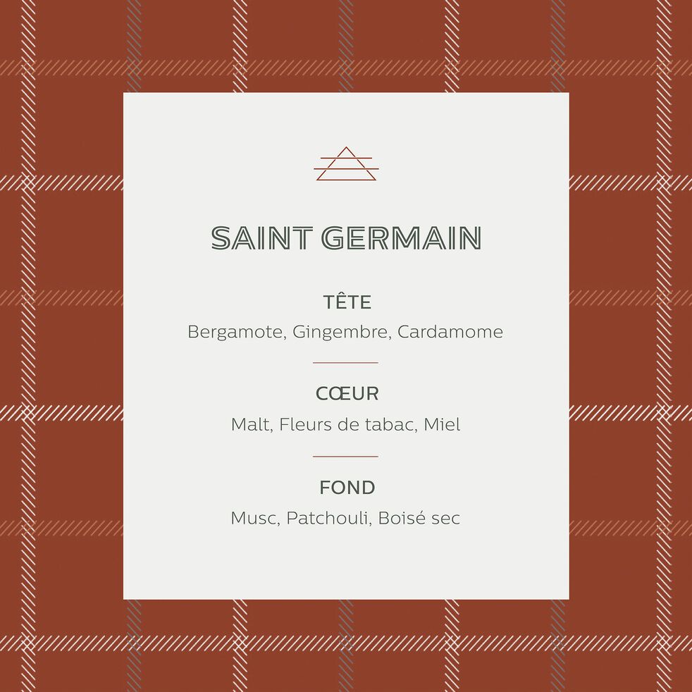 Bougie parfumée senteur Saint-germain 160g-St Germain