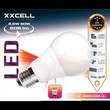 Lot de 2 ampoules LED D6cm culot E27 blanc chaud-STANDARD