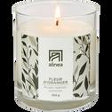 Bougie parfumée Fleur d'oranger 250g-ORANGER