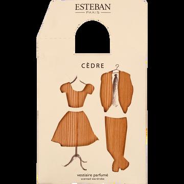 Sachet parfumé cèdre pour vestiaire-CEDRE