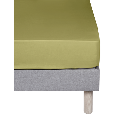 Drap housse en coton Vert guarrigue 160x200cm -bonnet 25cm-CALANQUES