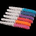 Bloc de 6 couteaux-EVOLUTION