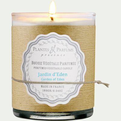 Bougie parfumée senteur jardin d'eden H9cm-MANON