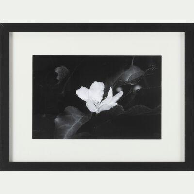 Image encadrée noir et blanc 30x40 cm-IRIS