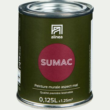 Peinture acrylique mate multi-supports - rouge sumac 0,125L-PEINTURE