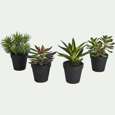 Succulente artificielle en pot - vert H22cm-SUCCULENT POT
