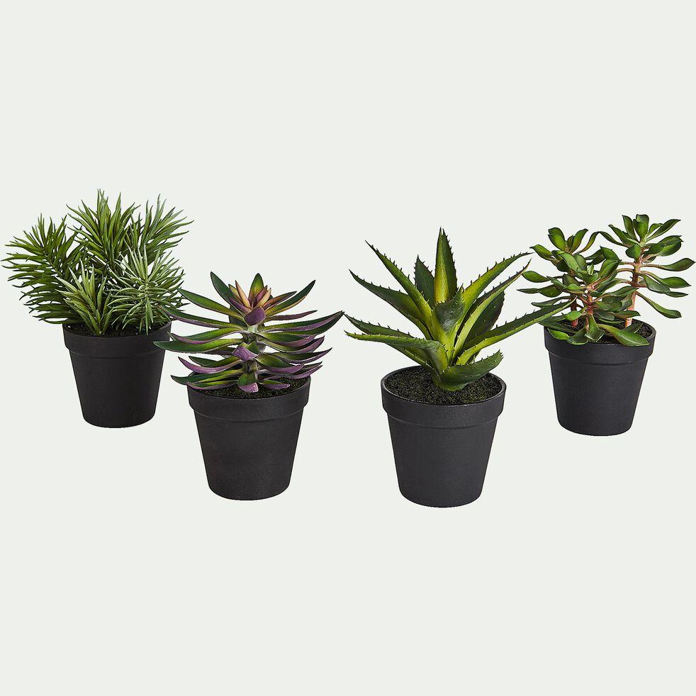 Plante grasse artificielle en pot H22cm-SUCCULENT POT