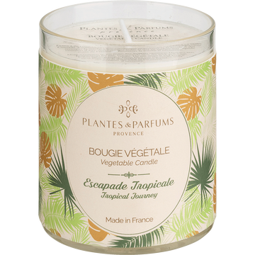 Bougie parfumée escapade tropicale 180g-Tropical