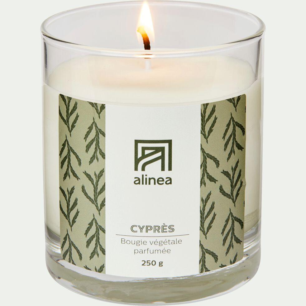 Bougie parfumée senteur Cyprès 250g-CYPRES