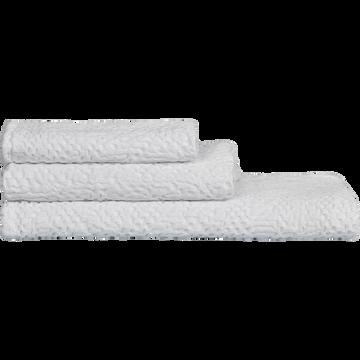 Linge de toilette clematis blanc ventoux-CLEMATIS