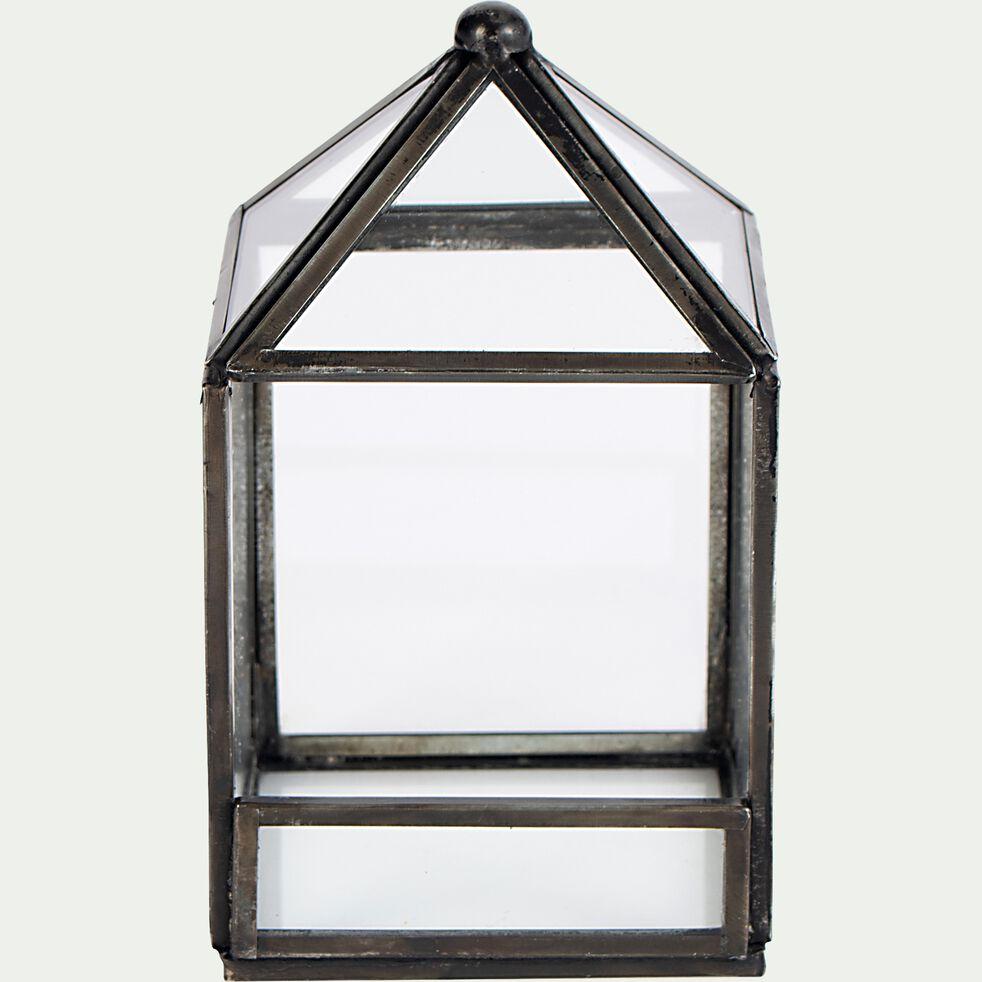 Terrarium en verre L8xl8xH13cm - transparent-SUCLE