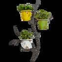 Porte plantes 3 supports en acier galvanisé anthracite-HEDERA