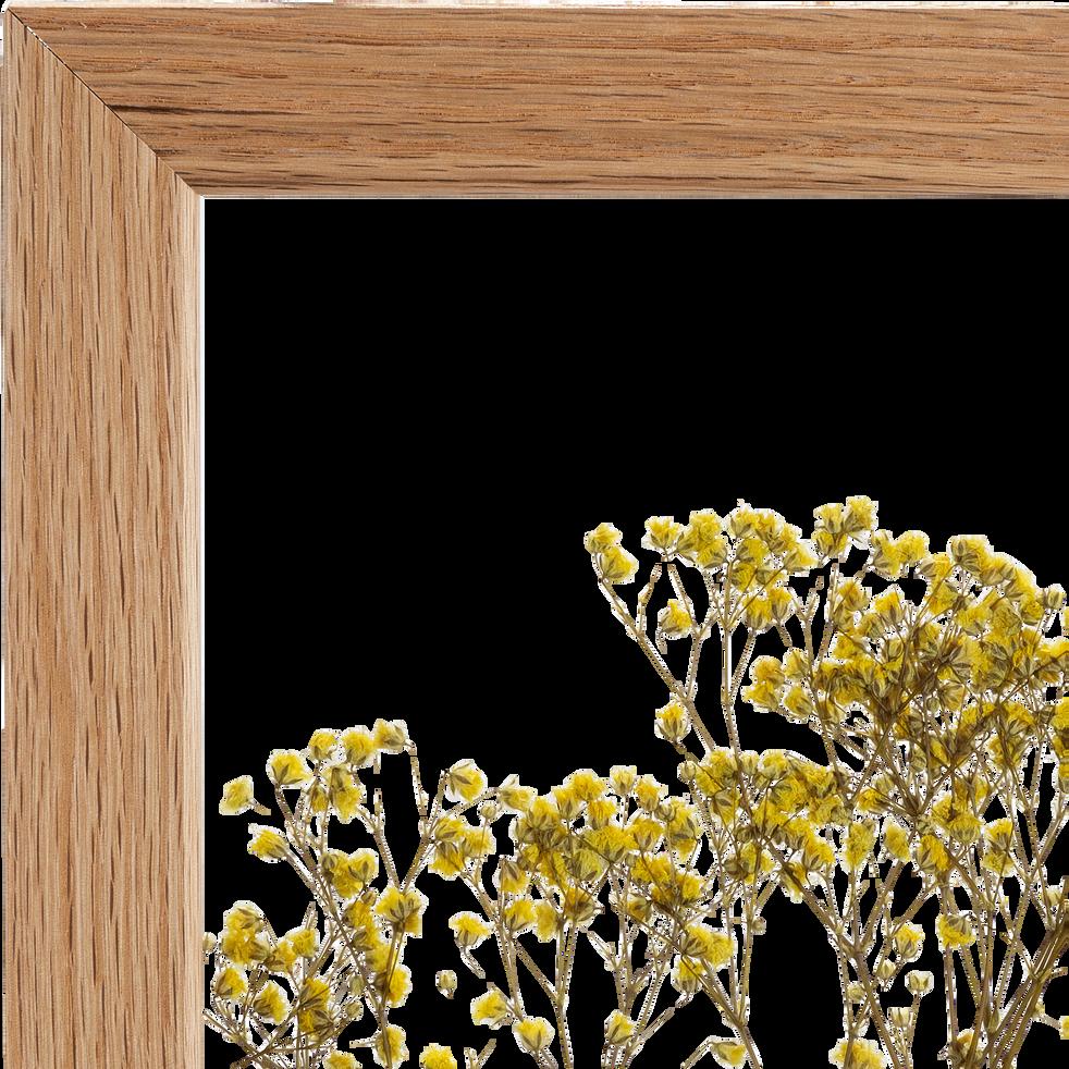 Plante encadrée gypsophile 29x35cm-NATURE