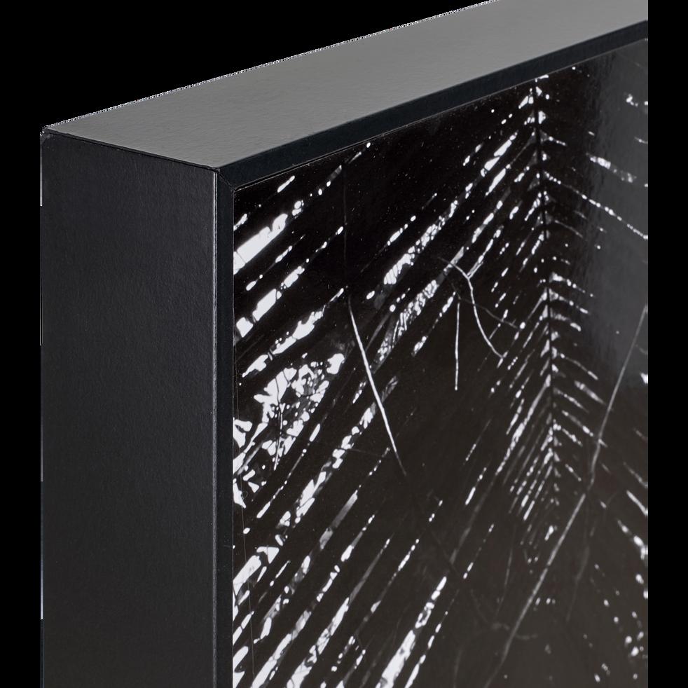 Image encadrée noir et blanc 122x82cm-BANYAN