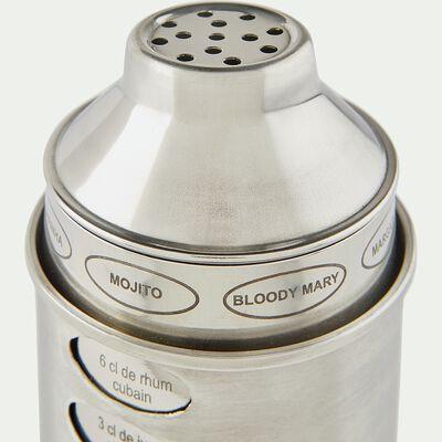 Shaker à cocktail en inox 60cl-DHARMA