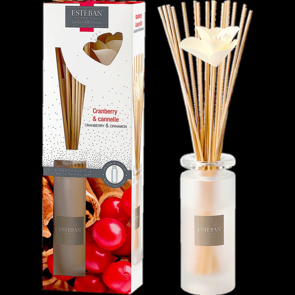 Diffuseur de parfum cranberry et cannelle 75ml-ESTEBAN