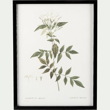 Cadre toile imprimée jasmin - 30x40 blanc-ROUMIE