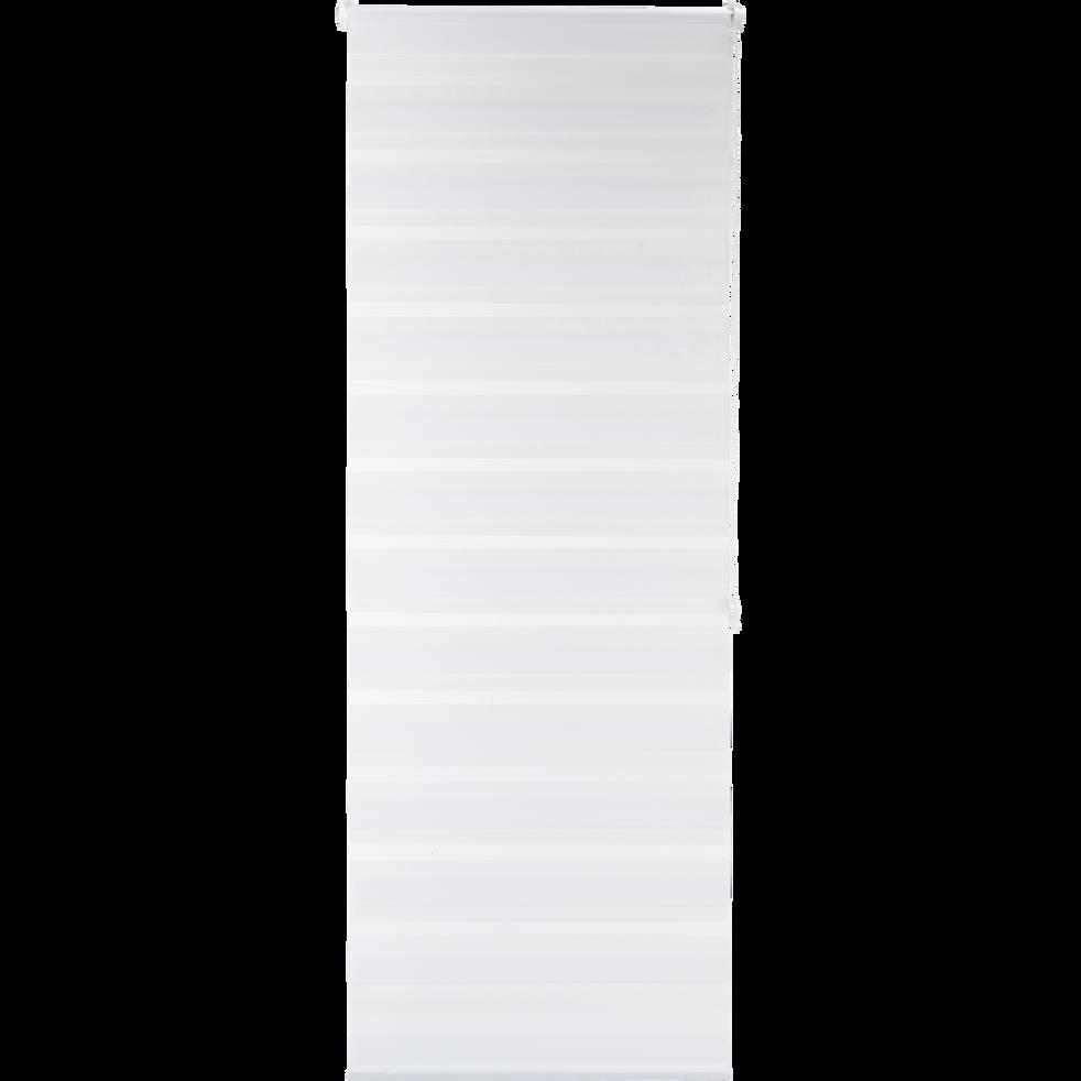 store enrouleur tamisant blanc 72x190cm jour nuit. Black Bedroom Furniture Sets. Home Design Ideas