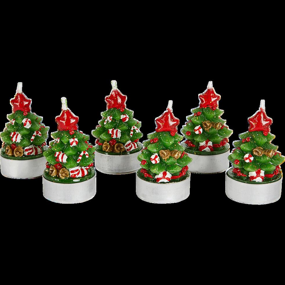 Boite de 6 bougies sapin H6,6cm-CARLET