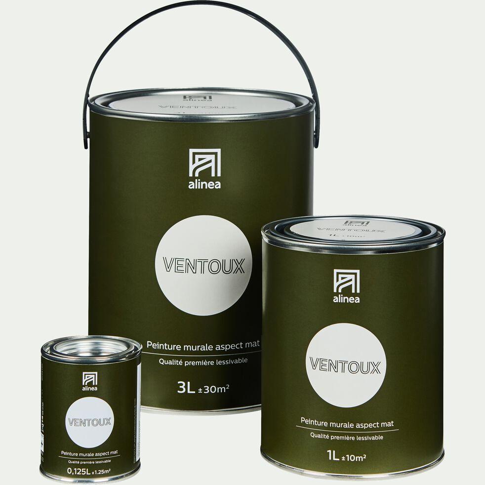 Peinture acrylique mate multi-supports - blanc ventoux 3L-PEINTURE