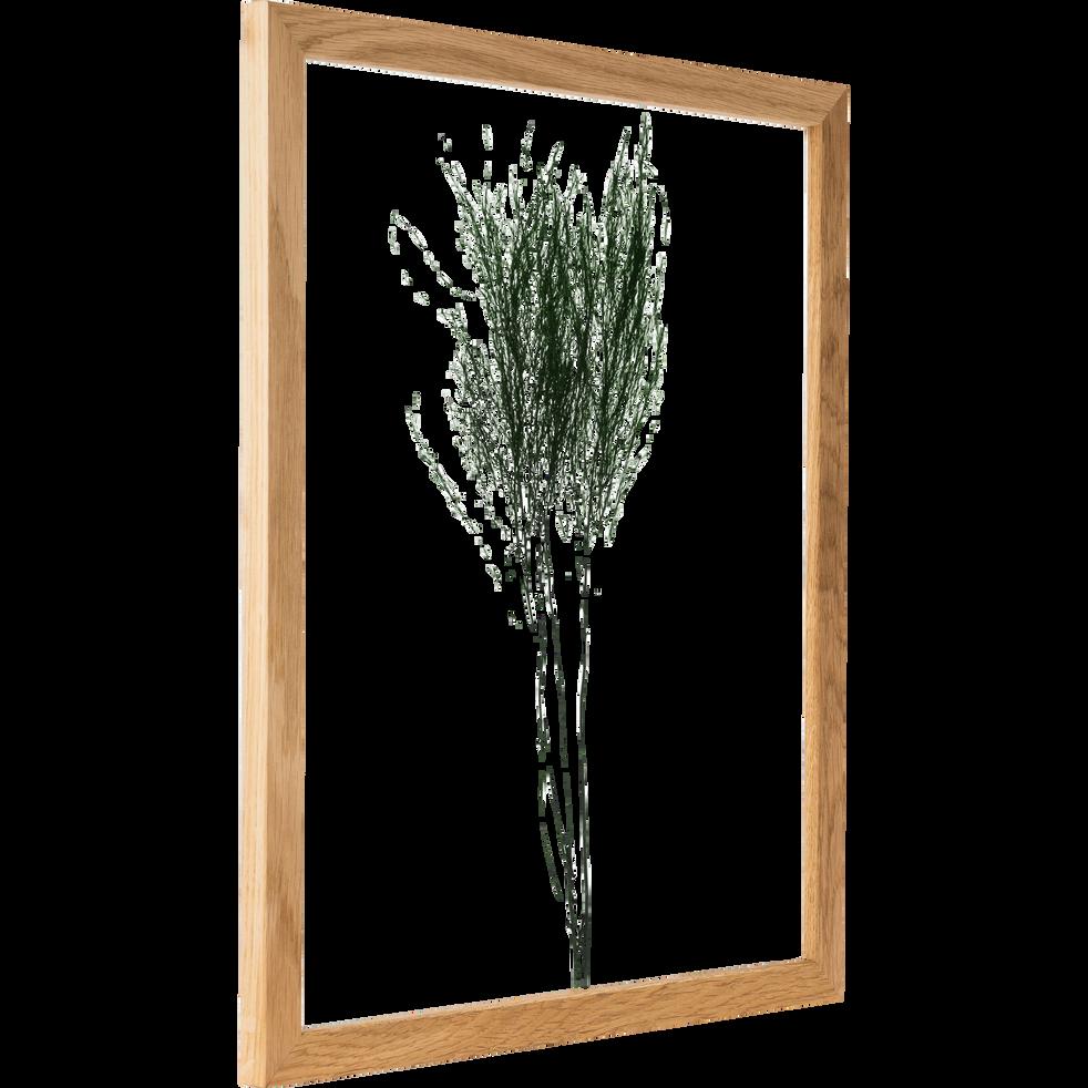 Plante encadrée treefern 44x54cm-NATURE