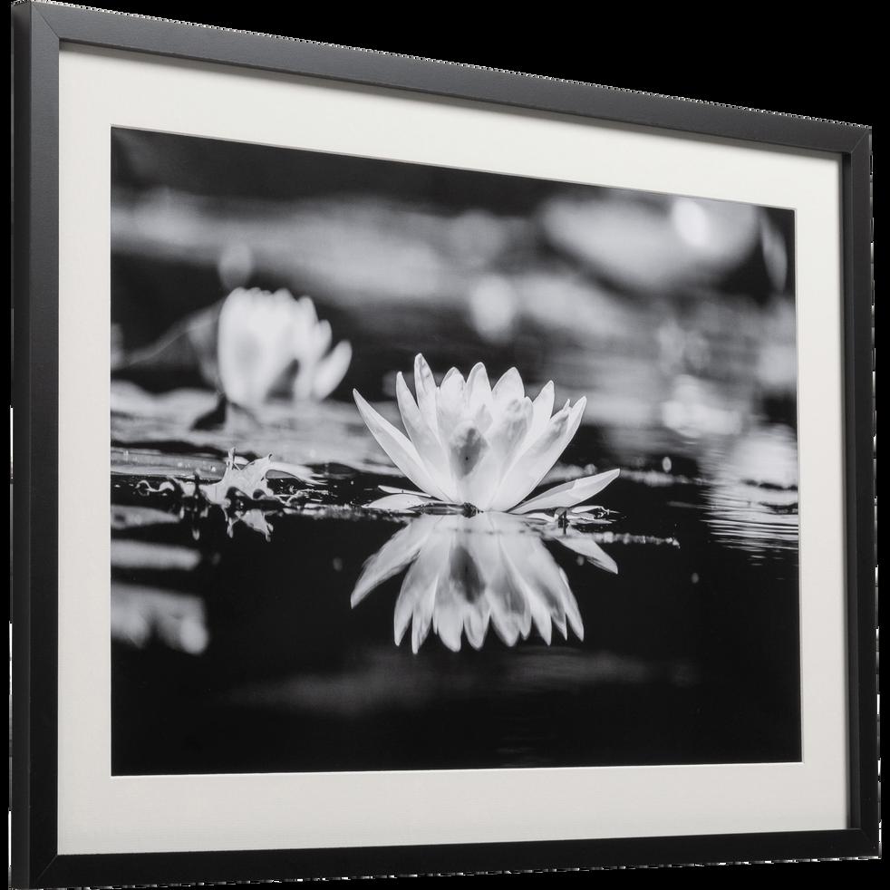 Image encadrée noir et blanc 50x70cm-NENUPHARE