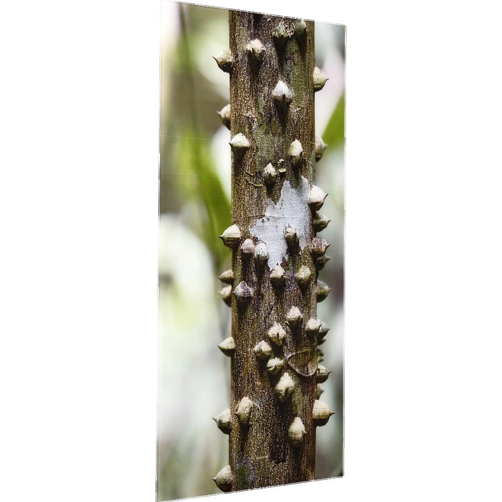 Image plexi verte 60x90 cm-PICO