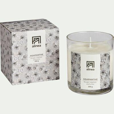 Bougie parfumée senteur Agapanthe 250g-AGAPANTHE