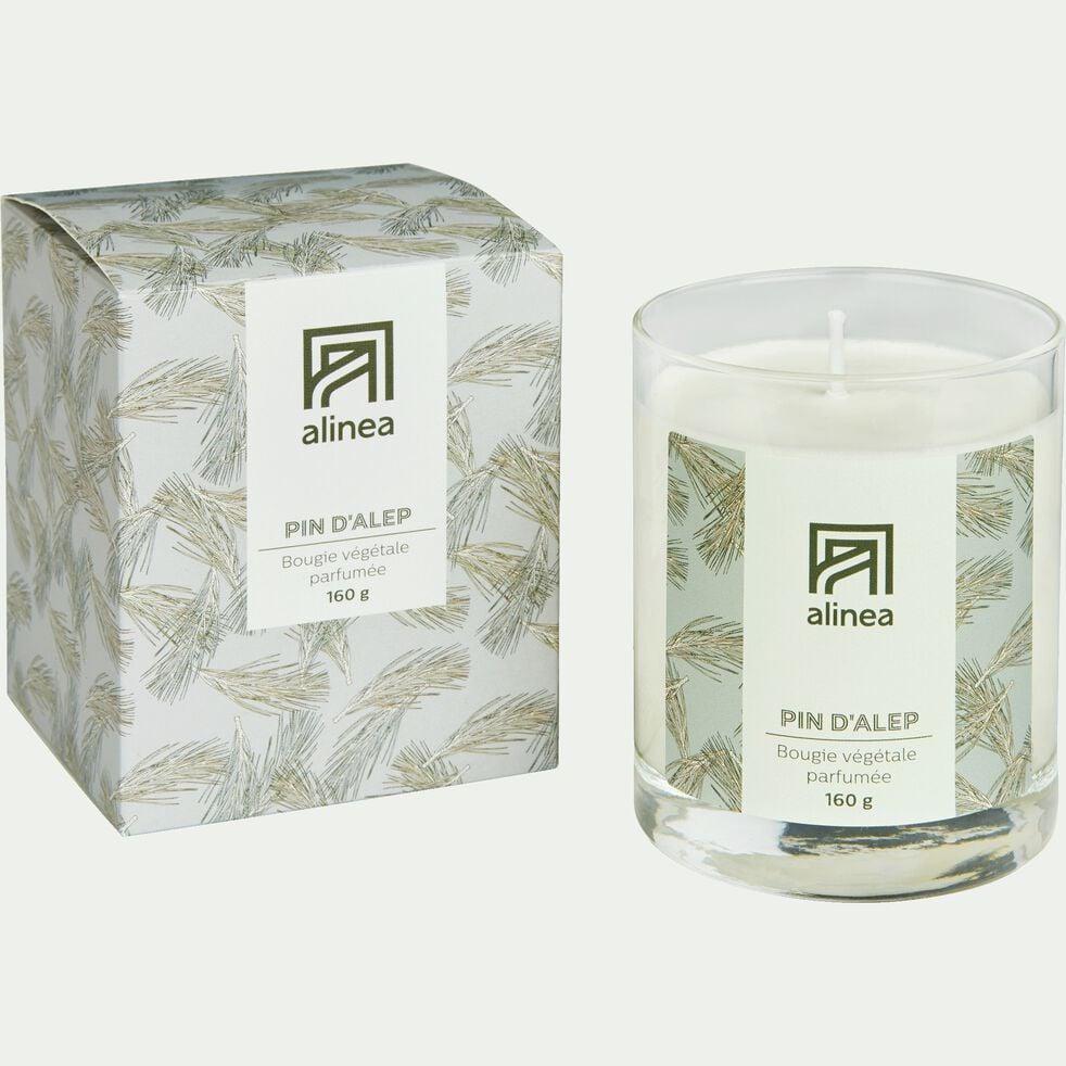 Bougie parfumée senteur Pin d'Alep 160g-SIGNATURE