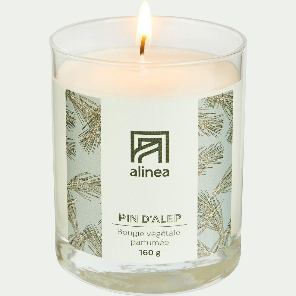 Bougie parfumée senteur Pin d'Alep 160g-PIN D ALEP