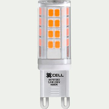 Ampoule LED blanc froid culot G9-G9