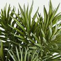 Plante grasse artificielle à épines - vert H23cm-EPINE POT