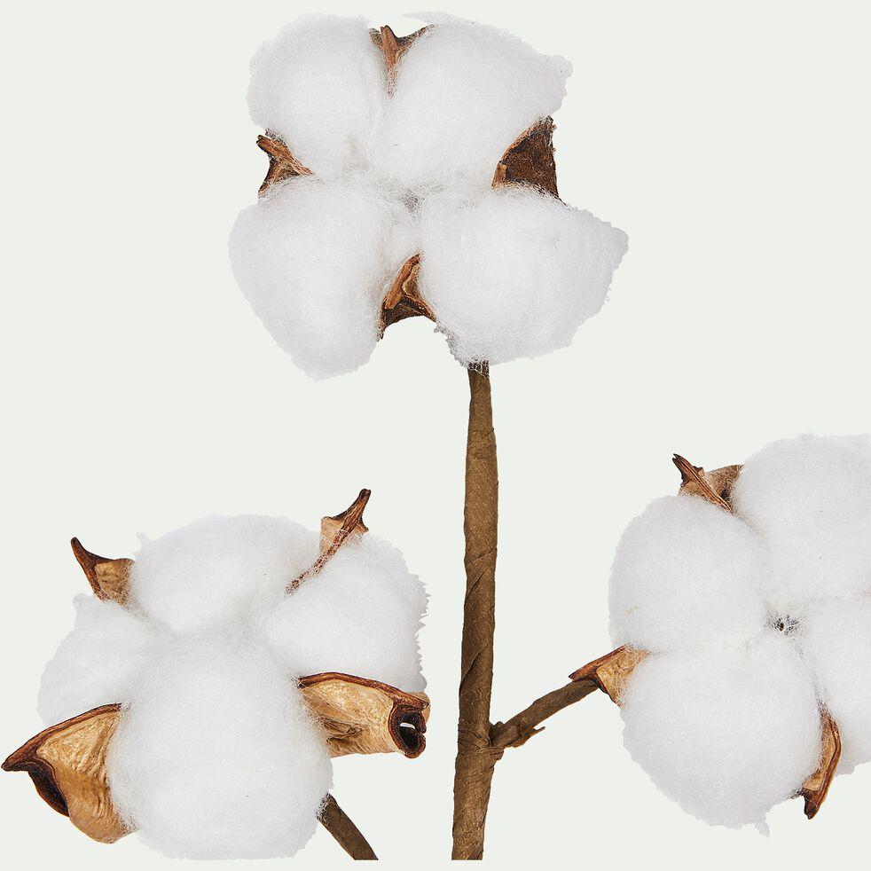 Branche artificielle de coton H19cm-COTON