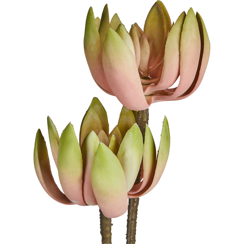 Fleur artificielle rose H76cm-ECHEVERIA